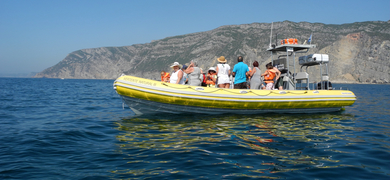 Boat hires in Sesimbra