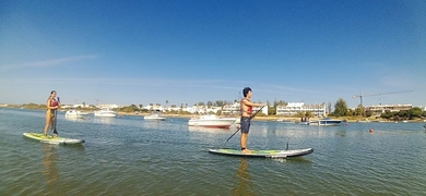 Explore the Ria Formosa by SUP