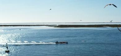 Olhão boat tour 3 Islands