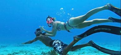 Snorkeling tour in Barbados
