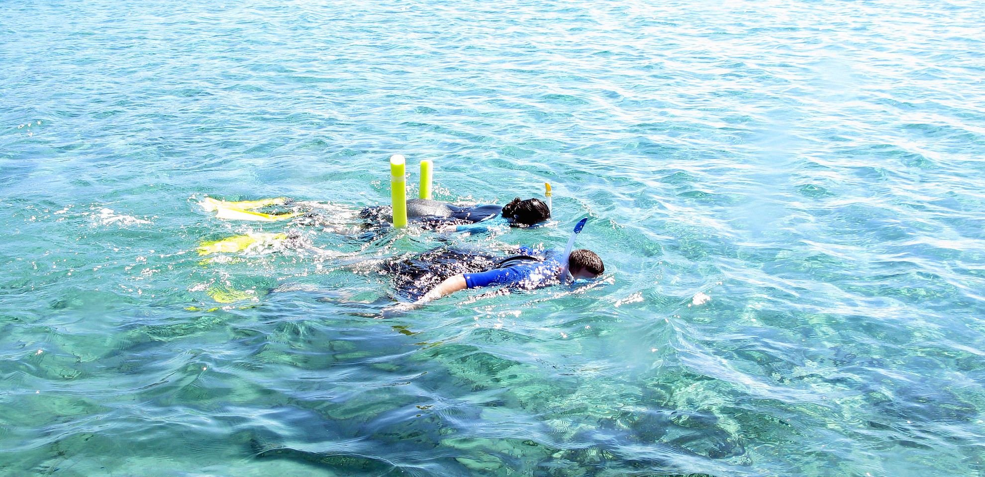 Snorkeling in Athens: Book your snorkeling tour now