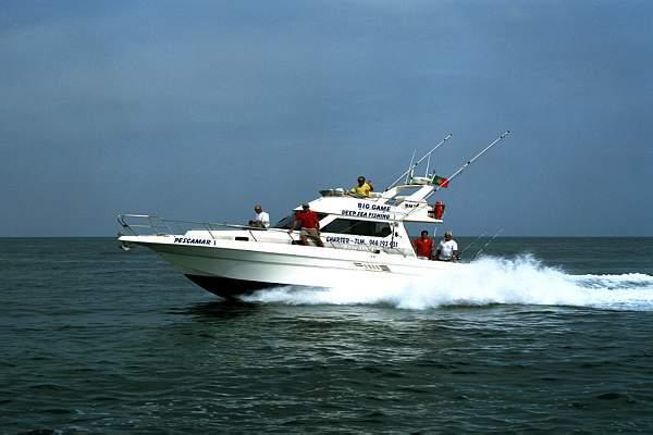 Shark fishing Lagos