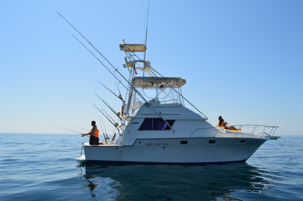 Half day fishing from tavira seabookings for Boat fishing games