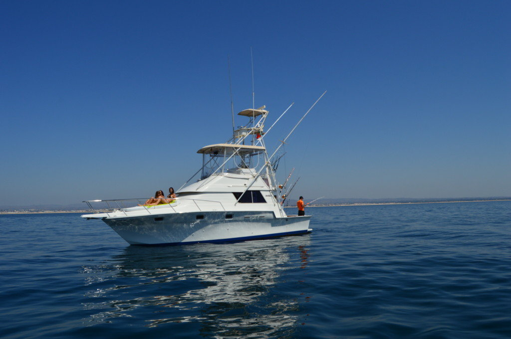 Big game fishing from tavira seabookings for Fishing boat games