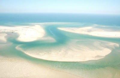 boat trips- ria formosa