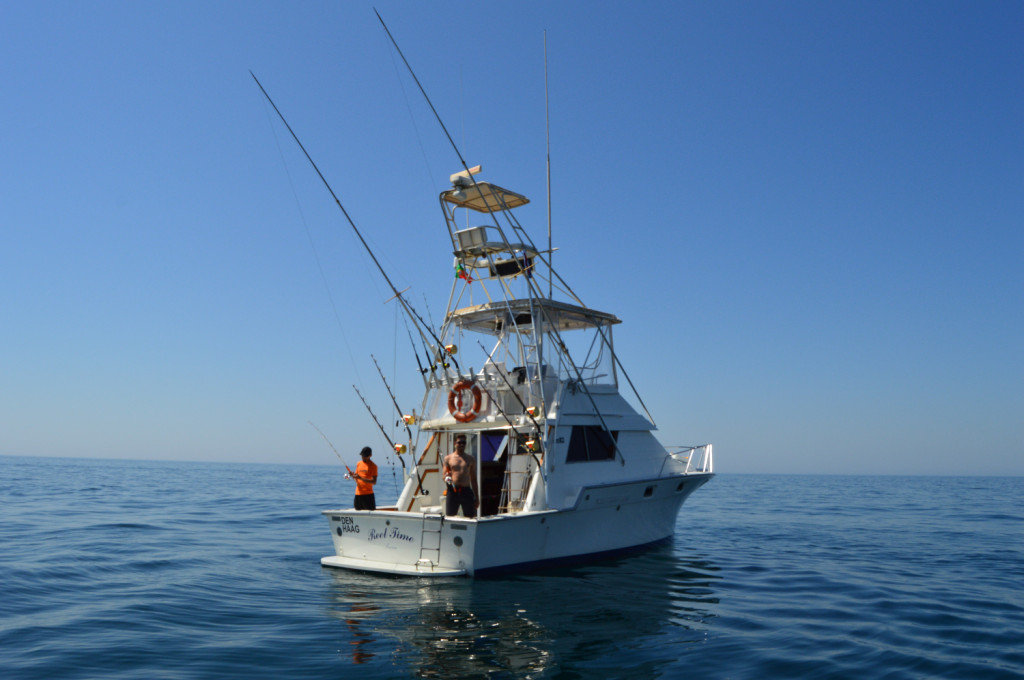 marine-tourism-big-game-fishing-dolphin-sight-seeing-speed-boat