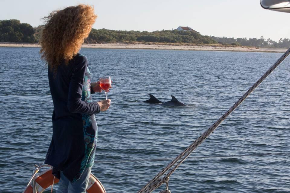 vertigem azul - dolphin watching Lisboa - setubal
