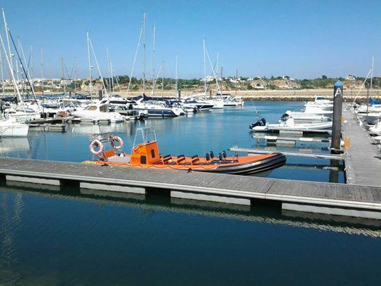 Dolfijnen Boottocht In Ferragudo Seabookings