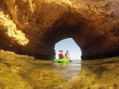 wildwatch kayaking