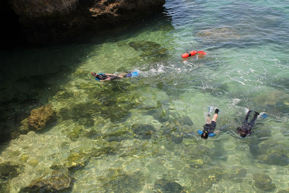 Snorkeling from a boat is one of the coolest activities in the Algarve for groups