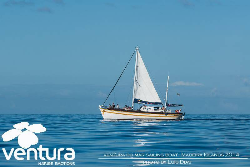 sailing boat trip ventura