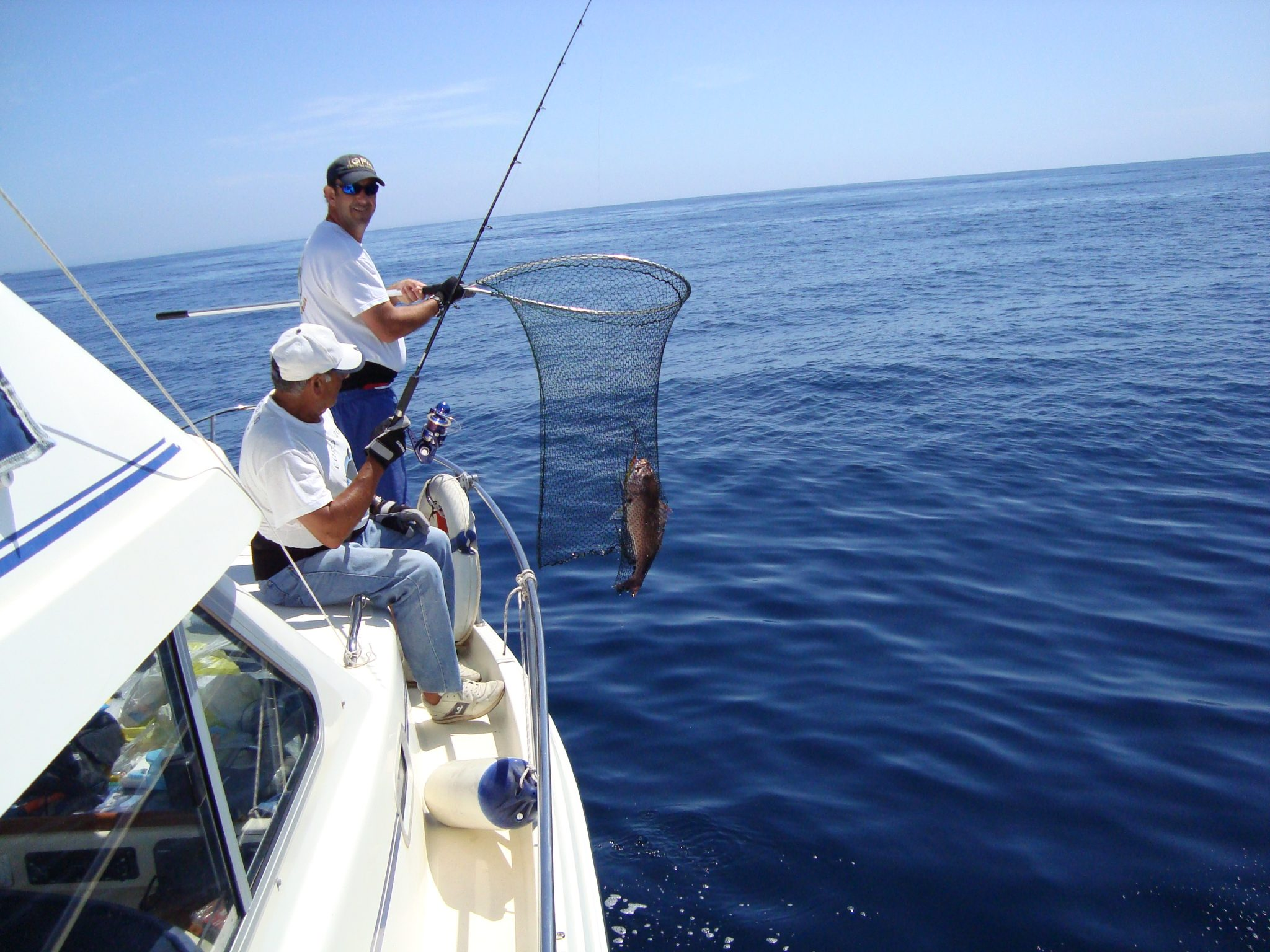 Jigging in portugal seabookings for Shark fishing games