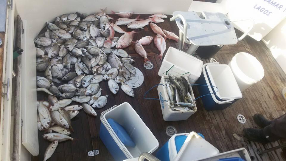 Fishing Lagos SeaBookings (5)