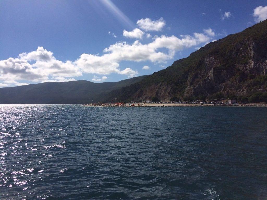 Dolfijnen Setúbal (3)