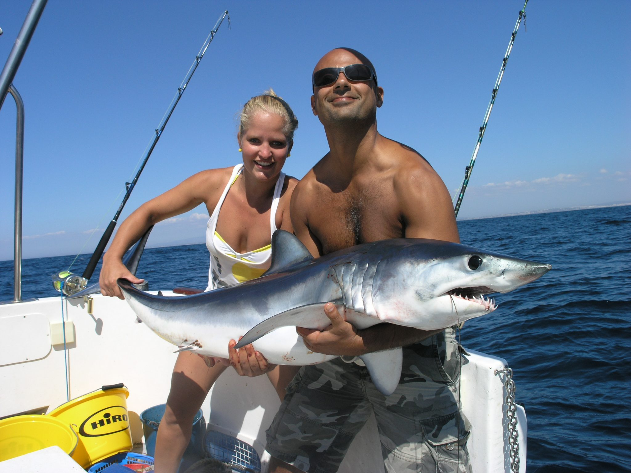 Shark fishing in albufeira seabookings for Surf fishing virginia beach
