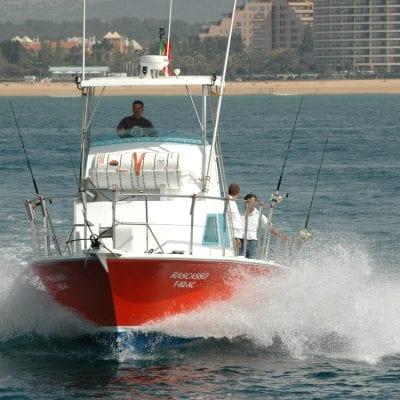 Shark fishing tour in Vilamoura