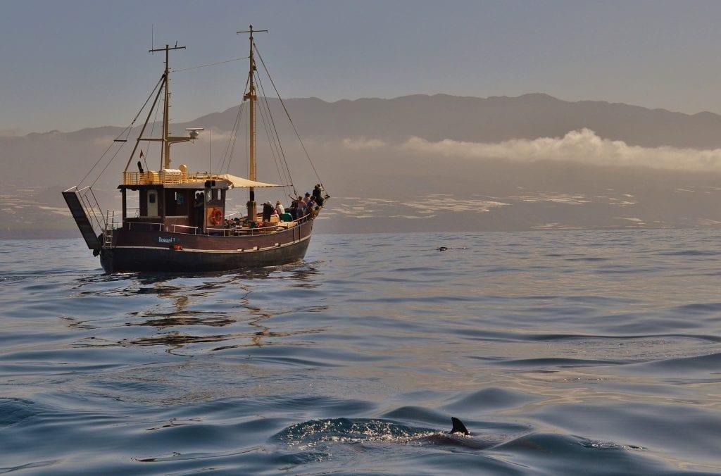 boat tour in La Palma