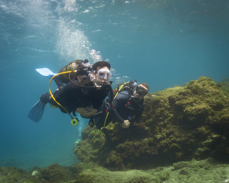 diving in Tenerife