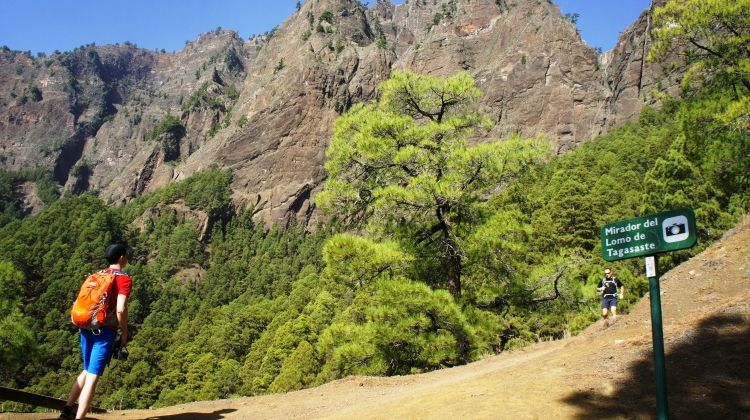 Hiking in La Palma is great for active travelers