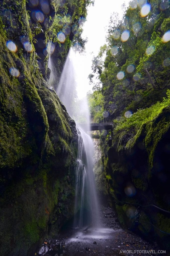 Enjoying a shower in this waterfall? Another reason to visit La Palma
