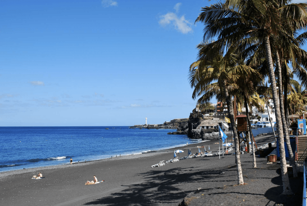 """La Palma"" - the palm trees, another reason to visit La Palma"